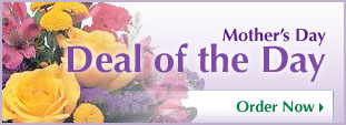 Mother's Day Deal of the Day Flowers