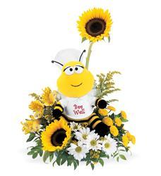 Teleflora's Bee Well Bouquet (01J400B)