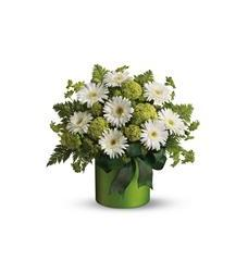 Teleflora's Luck of the Irish (08N560B)