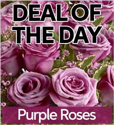 Purple Roses - PURR-DEAL1 (38.95)