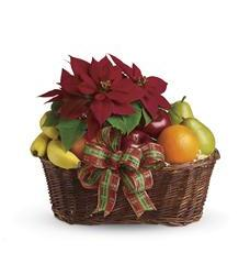 Fruit and Poinsettia Basket (T135-1A)