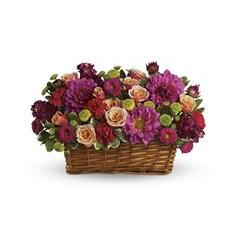 Burst of Beauty Basket (T159-3A)