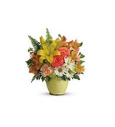 Teleflora's Clear Morning Bouquet (T18E305A)