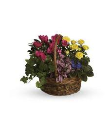 Blooming Garden Basket (T213-3A)