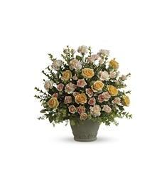 Teleflora's Rose Remembrance (T221-2A)