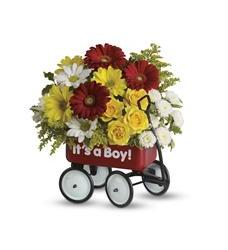 Baby's Wow Wagon by Teleflora (T35-1A)