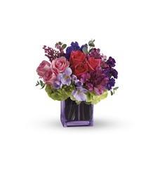 Exquisite Beauty by Teleflora (T48-2A)