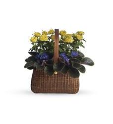 Garden To Go Basket (T92-2A)
