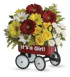 Baby's Wow Wagon by Teleflora - Girl (T97N400A)
