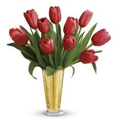 Tempt Me Tulips Bouquet by Teleflora (TEV23-7A)