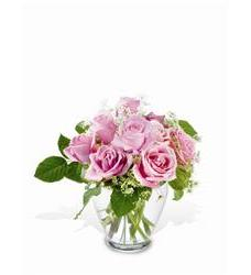 Teleflora's Tender Pinks (TF-WEB28)