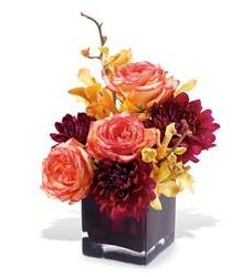 Teleflora's Burgundy Bliss (TF-WEB42)