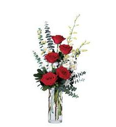 Red Roses and White Orchids (TF117-2)
