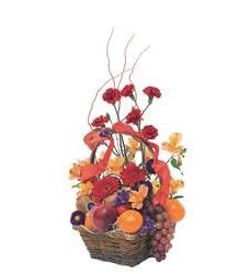 Fruits and Flowers Basket (TF157-4)