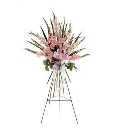 Sentimental Gladioli Spray (TF189-2)