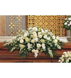 Pure White Casket Spray (TF194-1)