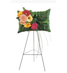 Uplifting Gerbera Pillow  (TF202-3)