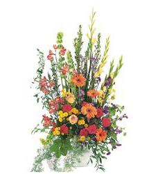 Summer Sentiments Arrangement  (TF203-1)