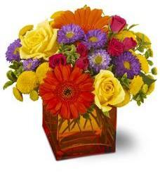 Teleflora's Another Year Bolder (TFWEB167)