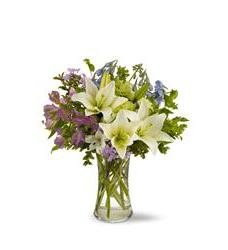 High quality flowers 80 100 flower shopping super fragrant heavenly hamptons tfweb175 mightylinksfo