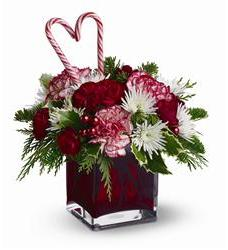 Teleflora's Holiday Sweetheart (TFWEB257)