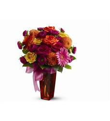 Strikingly Chic (TFWEB305)