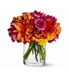 Watercolor Wonder (TFWEB360)
