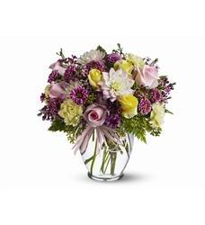 Soft and Beautiful (TFWEB420)