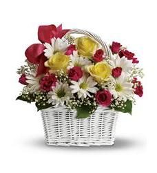 Daisy Dreams Basket (TFWEB512)