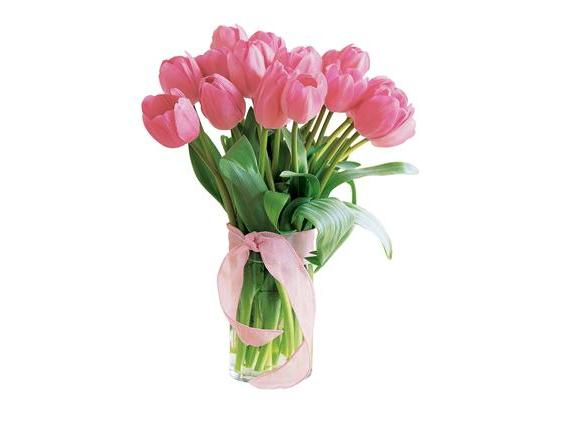 Spring Tulips- Deluxe Light Pink (20TPNK)