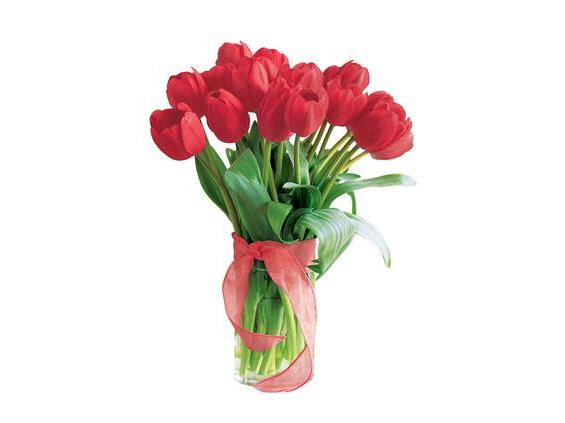 Spring Tulips- Deluxe Red (20TRED)