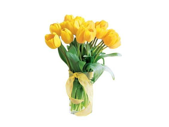 Spring Tulips- Deluxe Yellow