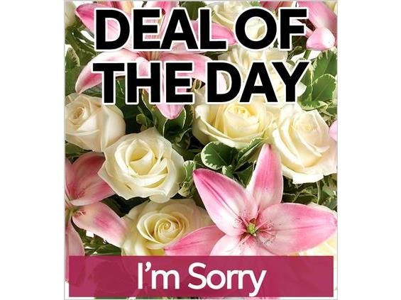 Fresh I'm Sorry Flowers (IS-DEAL1)