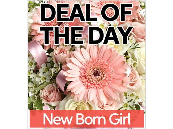 Fresh Baby Girl Flowers (NBG-DEAL1)