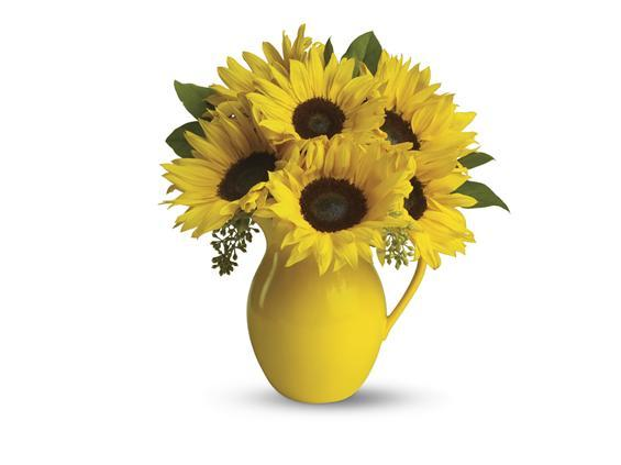 Teleflora's Sunny Day Pitcher of Sunflowers (T153-1A)
