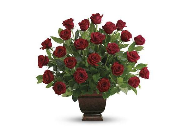 Teleflora's Rose Tribute (T224-1A)
