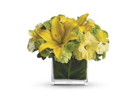 Oh Happy Day by Teleflora (T27-1A)