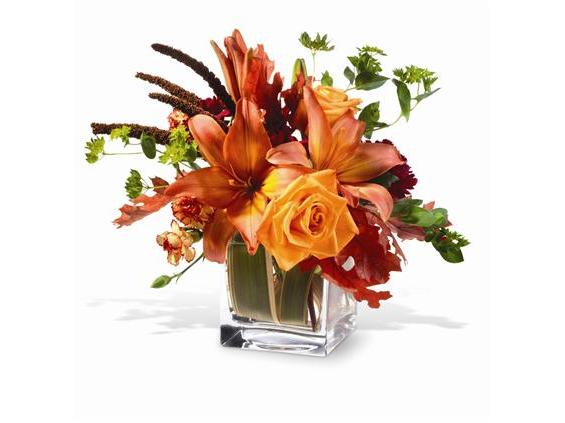Teleflora's Orange Spice (TF-WEB32)