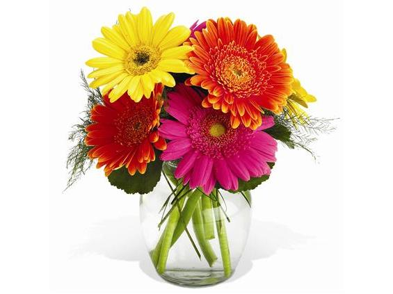 Teleflora's Morning Sunrise Bouquet - Premium (TF-WEB3)