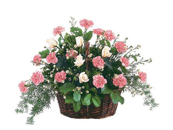 Pink Reverence Arrangement (TF199-1)