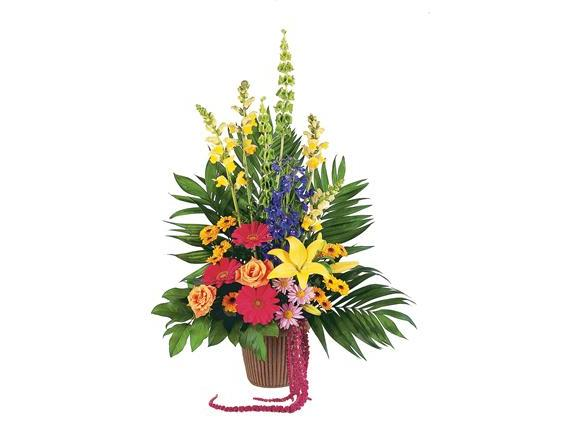 Celebration of Life Arrangement  (TF203-9)