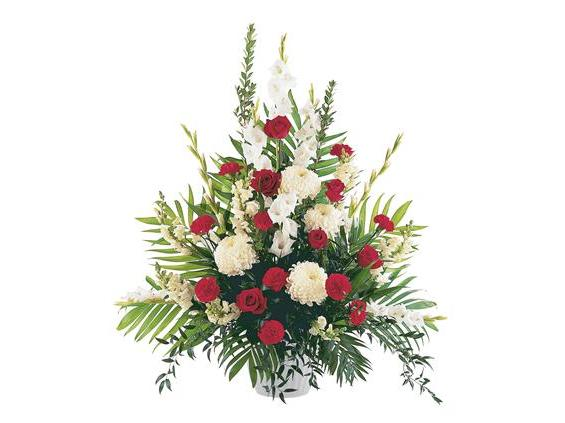 Cherished Moments Arrangement  (TF207-4)