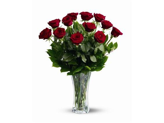 A Dozen Red Roses (TF31-1)