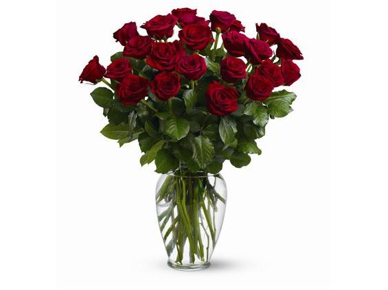 Two Dozen Red Roses (TF31-2)