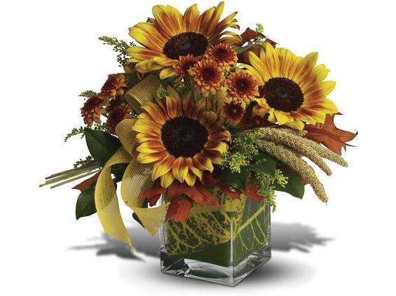 Bunches Of Blooms Bouquet (TFWEB571DX)