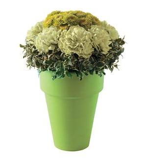 Teleflora's Monet Green Bouquet (05N700B)