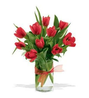 Spring Tulips - Red (10TRED)