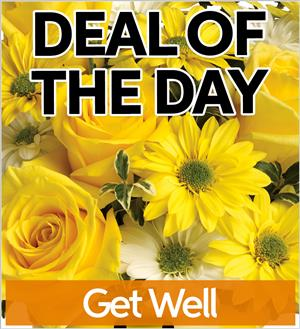 Fresh Get Well Flowers (GW-DEAL1)