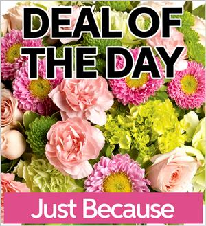Fresh Just Because Flowers Jb Deal1 4395