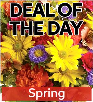 Fresh spring flowers sp deal1 4395 fresh spring flowers sp deal1 mightylinksfo